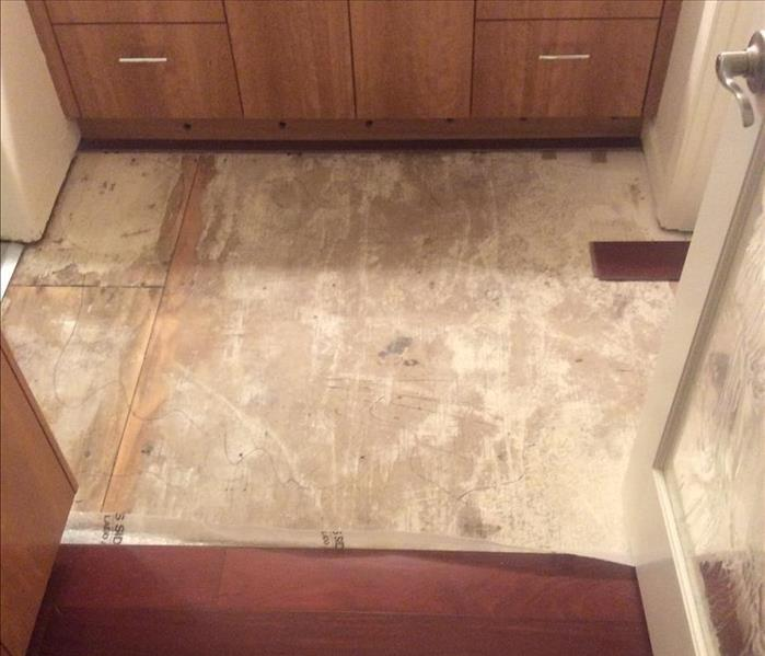 Water Damaged Wood Floor in Bellingham, WA. After
