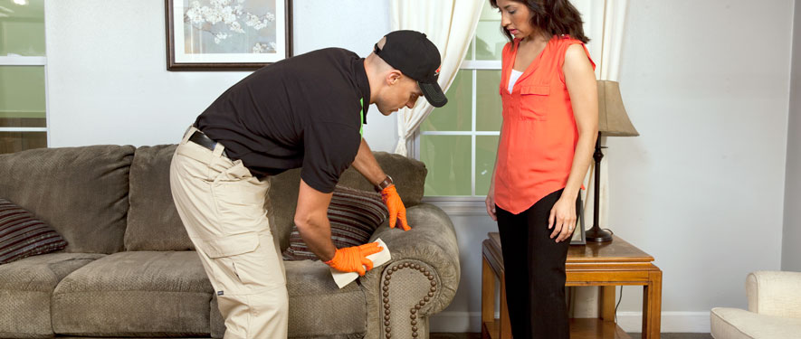 Bellingham, WA carpet upholstery cleaning