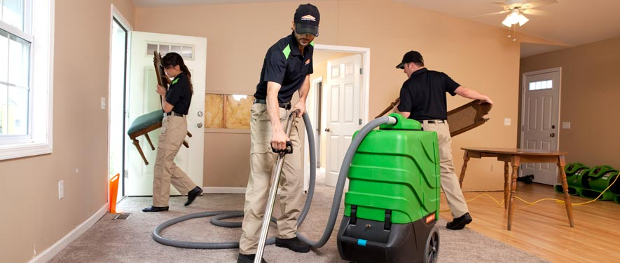 Bellingham, WA cleaning services